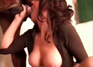 Sexy busty chick is sucking her stallion