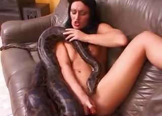 Real snake in amazing exotic bestiality sex